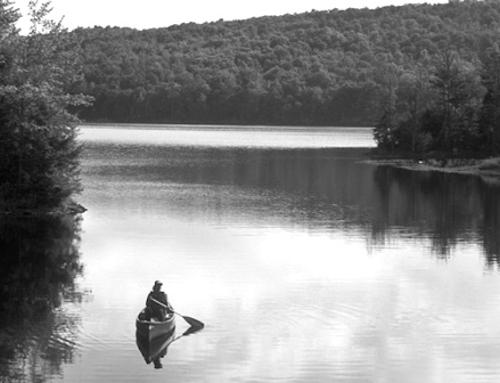 Das Leben sollte einem Fluss gleichen