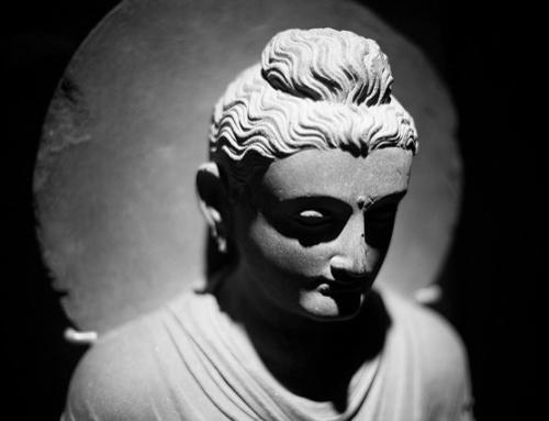 Wie man ein Buddha wird (in 10 Sätzen)