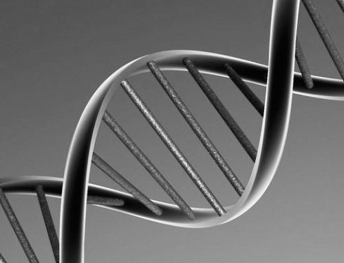 Forschung: Eltern geben Traumatisierung an Kinder über Gene weiter