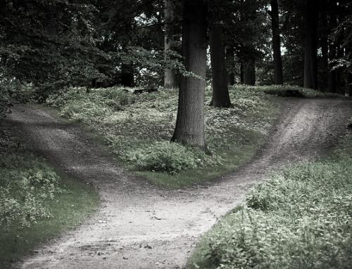 10 Gedanken, wenn Du Dich nicht entscheiden kannst