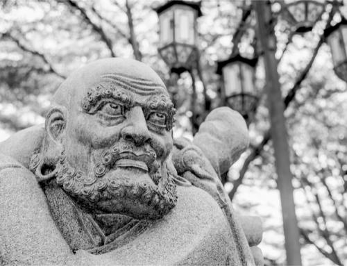 Die Weisheit der Wut: Was Dein Zorn Dir sagen will