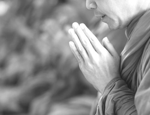 """Die Praxis der """"liebenden Güte"""": Wie wir uns von Leid befreien können"""