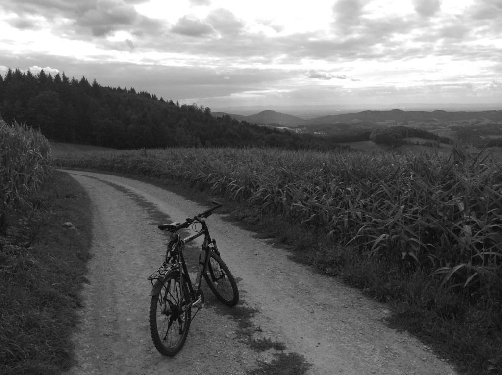 Gutes Ende für mich und mein Fahrrad: Ich liebe es nach wie vor Rad zu fahren.