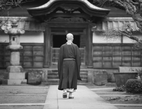 Buddha sagt: Du bist nicht der, der Du denkst
