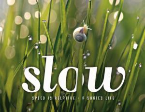 slow-der-film--1024x791